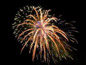 2016 goals - Fireworks - New Year